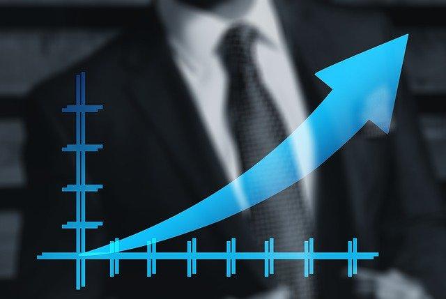 podnikatel a růst firmy